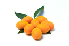 Mayongchid, prune mariale de Mayongchit, gandaria, mangue de prune, fond blanc Photo stock