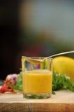 Mayonnaise Royalty Free Stock Photo