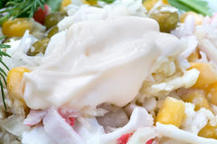 Mayonnaise is in salad Royalty Free Stock Photos