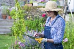 Mayor de la mujer que cultiva un huerto que usa una tableta digital en su GA Imágenes de archivo libres de regalías