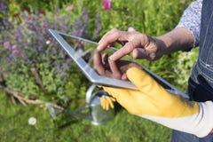 Mayor de la mujer que cultiva un huerto que usa una tableta digital en su GA Foto de archivo