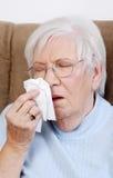 Mayor enfermo que estornuda Foto de archivo libre de regalías