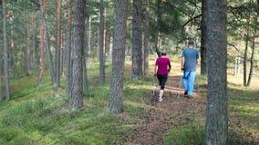 Mayores activos que hacen el nordic que camina en el bosque almacen de video