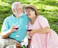 Mayores de la comida campestre con el vino Fotografía de archivo libre de regalías