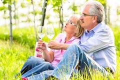 Mayores felices que comen vino de consumición de la comida campestre Foto de archivo