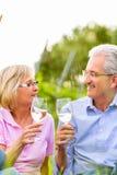Mayores felices que comen vino de consumición de la comida campestre Imagen de archivo