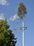 Maypole Fotografia de Stock