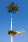 Maypole Stock Photos