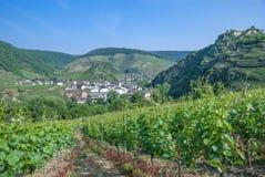 Mayschoss, Ahr dolina, Niemcy Obrazy Royalty Free