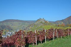 Mayschoss, Ahr dolina, Niemcy Obraz Stock