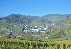 Mayschoss, Ahr dolina, Niemcy Zdjęcia Stock