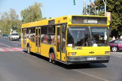 MAZ city bus Royalty Free Stock Photography