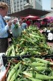 Maíz en la mazorca nativo en el mercado del granjero Imágenes de archivo libres de regalías