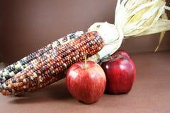Maíz indio y manzanas. Imagen de archivo libre de regalías