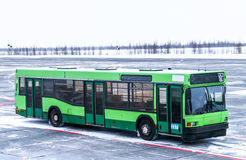 MAZ 103. NOVYY URENGOY, RUSSIA - FEBRUARY 19, 2016: Green airport bus MAZ 103 at the airfield of the Novyy Urengoy international airport stock photos