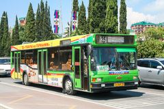 MAZ 103. Sochi, Russia - July 26, 2009: City bus MAZ 103 in the city street royalty free stock image