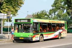 MAZ 103. SOCHI, RUSSIA - JULY 25, 2009: Green MAZ 103 city bus at the city street stock image