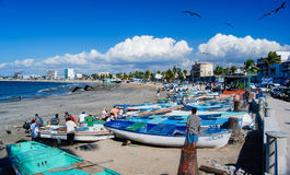 Mazatlan Fishermen Royalty Free Stock Image
