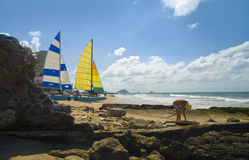 Mazatlan, mexico. Man picking up sea shells. Mazatlan, Mexico. A man is picking up seashells on the beach. Two colorful sailboats are  in the background Royalty Free Stock Photography