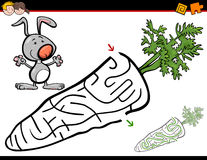 Maze activity with bunny. Cartoon Illustration of Education Maze or Labyrinth Activity Game for Children with Rabbit and Carrot Stock Photography