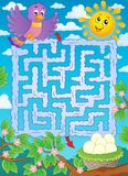 Maze 2 with bird theme Royalty Free Stock Images