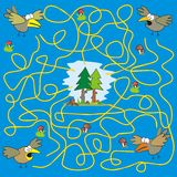 Maze - birds. A game for children and adults. Find your way in the forest Stock Image