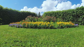 Maze among the bushes and Flower bed stock footage