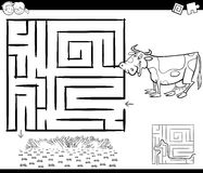 Maze with cow for coloring. Black and White Cartoon Illustration of Education Maze or Labyrinth Game for Children with Cow and Field Coloring Page Stock Image