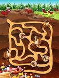 Maze Game Stock Photo