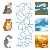 Maze game (birds and habitat). Game for children: Maze game (birds and habitat Stock Photos