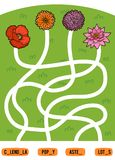 Maze game for children. Set of flowers. Maze game for children. Find the way from the picture to its title and add the missing letters. Set of flowers Stock Photos