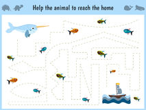 Maze game. Educational children cartoon game for children of preschool age. Help to find the way home in the sea, narwhal and feed. Him fish. Vector Royalty Free Stock Photography