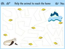 Maze game. Educational children cartoon game for children of preschool age. Help to find the way home to the Arctic walrus and fee. D him fish. Vector Stock Photo