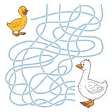 Maze game (goose family) Royalty Free Stock Image
