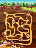 Maze game Stock Photo