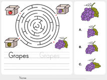 Maze game: Pick grapes box - Sheet for education Royalty Free Stock Photo