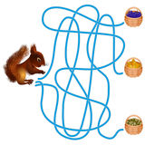 Maze game, squirrel. Stock Image