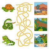 Maze game (turtle, snake, iguana and habitat). Game for children: Maze game (turtle, snake, iguana and habitat stock illustration
