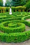 Maze garden Stock Image