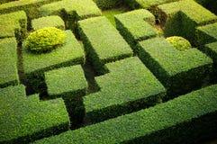 Maze garden Stock Photo