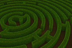 Maze with grass walls. Royalty Free Stock Photos