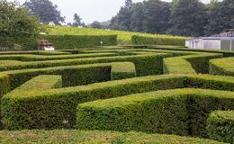 The Maze at Leeds Castle stock image