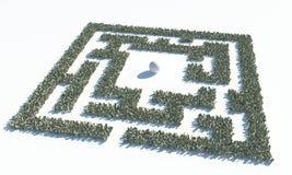 Maze Labyrinth financeiro feito de cédulas dos usd ilustração do vetor
