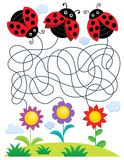Maze 25 with ladybugs and flowers Stock Photography