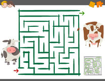 Maze leisure game with cows. Cartoon Illustration of Education Maze or Labyrinth Leisure Game with Calf and Cow stock illustration