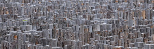 The maze of logs Royalty Free Stock Photos
