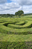 Maze made from a hedge. Complex hedge maze landscape on a summers day Royalty Free Stock Photo