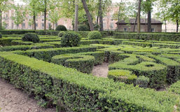 Maze in Oca gardens Stock Photography