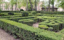 Maze in Oca gardens Stock Photography