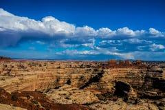 Maze Overlook Arkivbilder